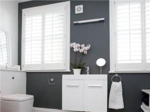a6490a4e4923c7fdb7e5a20664cc018c--bathroom-wall-bathrooms-decor